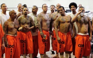 Inmates stand in a gymnasium where they are housed due to overcrowding at the California Institution for Men state prison in Chino